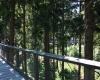 Stezka korunami stromů - Lipno 004