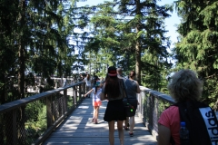 Stezka korunami stromů - Lipno 005