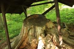 Stožecká skála a Nové Údolí 005