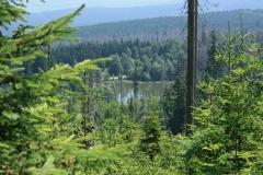 Šumava 386