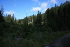 Šumava 2015 133